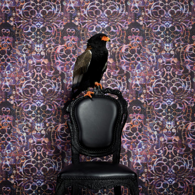 Neo Royal Collection by Marcel Wanders