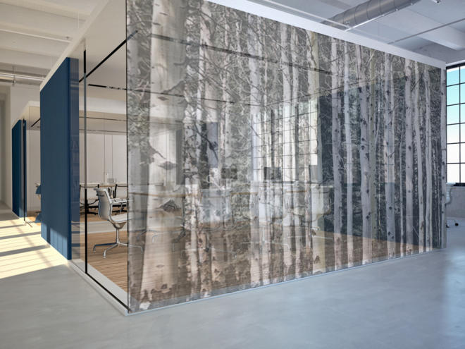 Trees And Gardens Birch Forest Tektura Wallcoverings