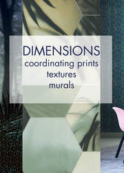 Dimensions collection by Edward Van Vliet