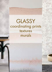 Glassy Collection (while stocks last)