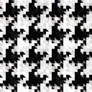 Large Dogtooth