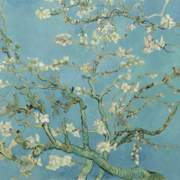 VAN30548 mural