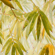 Bamboo Acid Yellow