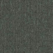 INT218688