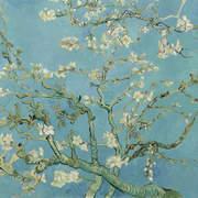 VAN200330 Almond Blossom mural 280x400cm